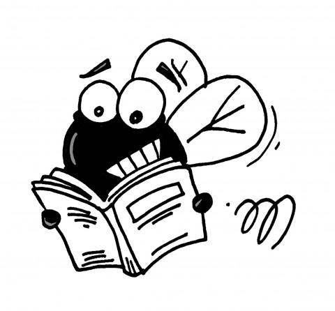 vlieg leest een boek